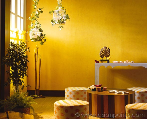 Asian Paints_Image2