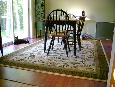 big area rug cozy dining area and plenty of sunshine image credit