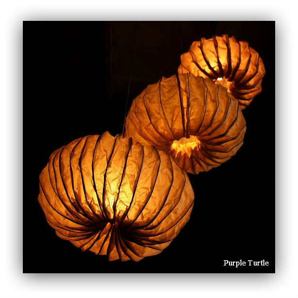 Banana fibre Sea Urchin Inspired Lamps_turtle