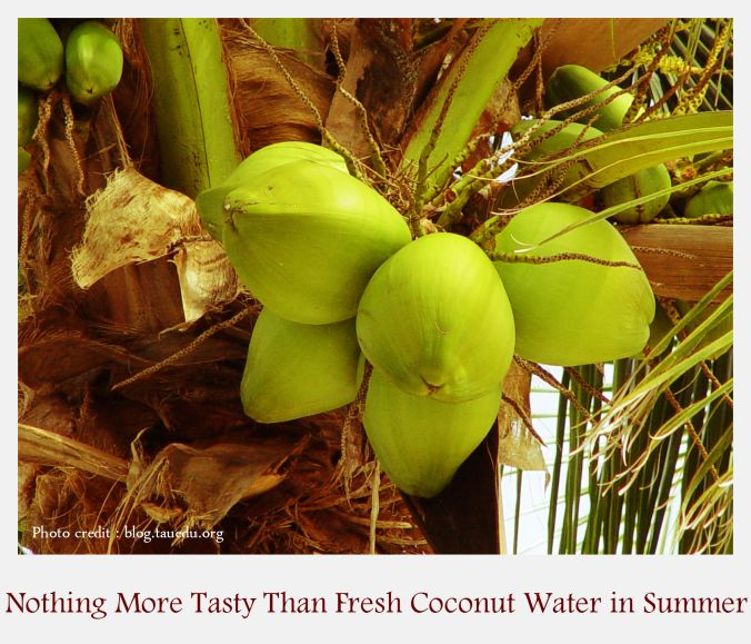 coconut-water-health-benefits1