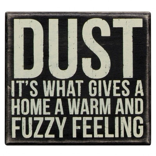 Dust it's what gives a home a warm and fuzzy feeling