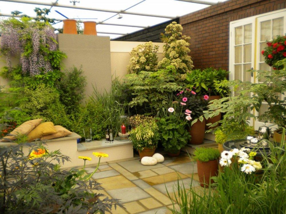 terrace garden 1