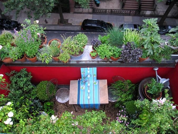 terrace garden 2 _66squarefeet