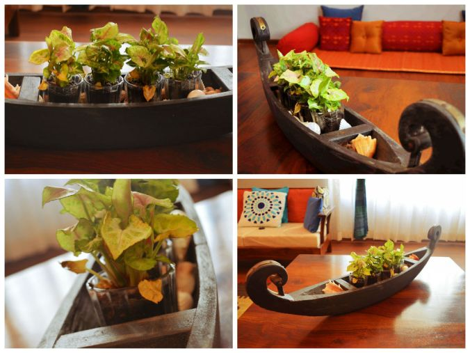 Indoor Planter Displ
